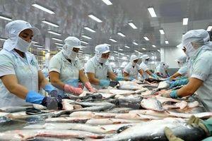 Cá tra Việt Nam bị mức thuế cao kỷ lục tại Mỹ