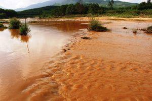 Quảng Nam: Khẩn trương khắc phục ô nhiễm môi trường tại xã Tam Lãnh