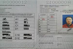 Giấy phép lái xe quốc tế - IDP có được phép sử dụng tại Việt Nam?