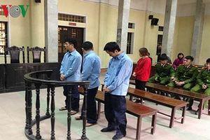 13 tháng tù cho kẻ buôn lậu 36 kg sừng tê giác