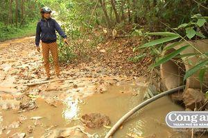 Vụ vỡ bờ đập hồ chứa thải quặng vàng: UBND tỉnh Quảng Nam chỉ đạo xử lý nghiêm
