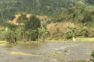 Xử phạt Công ty Apatit Việt Nam 350 triệu đồng vì sự cố môi trường