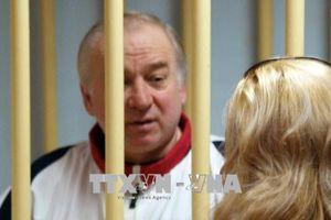 Phát hiện dấu vết cựu điệp viên Skripal liên quan đến tổ chức tội phạm