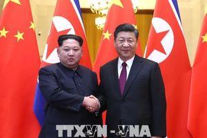 Biến chuyển tích cực từ Đông Bắc Á