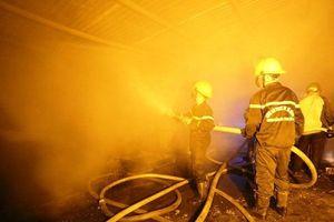 Cháy lớn trong đêm, thiêu rụi toàn bộ trại nuôi dế