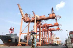 Đưa vào hoạt động thêm 2 cần trục giàn xếp dỡ tại cảng Tân Vũ