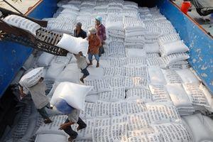 Hiệp hội Xuất khẩu gạo Việt Nam: Tại sao không?