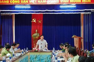 Lãnh đạo tỉnh Quảng Nam kiểm tra thực tế hiện trường vụ phá rừng phòng hộ huyện Đông Giang