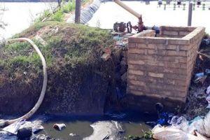 Bình Định: Ồ ạt nuôi tôm, vô tư xả thải phá hủy môi trường