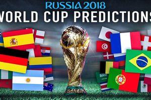 Hình ảnh 12 sân vận động chuẩn bị cho World Cup 2018 tại Nga