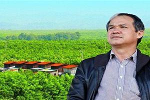 HAG: Hé lộ 1.625 ha vườn cây ăn trái trong thương vụ nghìn tỷ Hưng Thắng Lợi