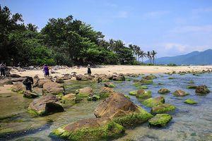 Đà Nẵng đề nghị dự án Lancaster Nam O Resort làm hàng rào mềm, giữ lại các di tích