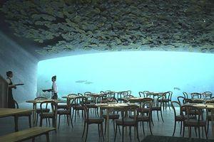 Ngắm nhà hàng đầu tiên trên thế giới được xây dưới đáy biển