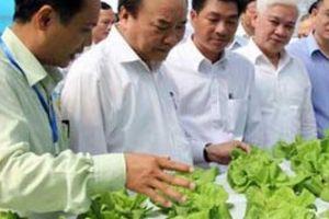 Hội nghị Thủ tướng đối thoại với nông dân: Phấn khởi và kỳ vọng