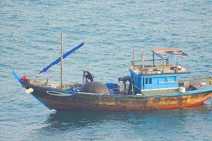 Tạm giữ tàu dùng thuốc nổ đánh bắt cá trên vùng biển Sơn Trà