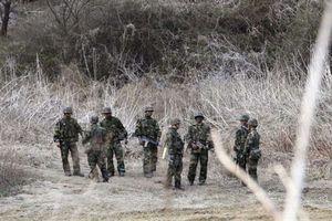 Nga bất ngờ lên tiếng về đối thoại liên Triều