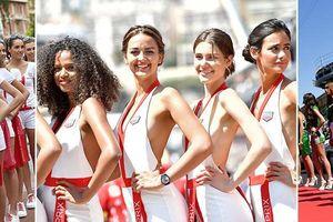 'Dàn mỹ nữ' trở lại đường đua F1 bất chấp lệnh cấm