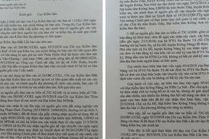 Một trong 3 bộ hồ sơ về cây cổ thụ 'khủng' bị làm giả