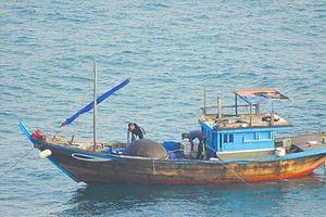Bí thư Thành ủy Đà Nẵng lưu ý Bộ đội biên phòng bảo vệ tài nguyên tại Sơn Trà