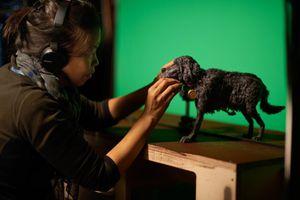 Cận cảnh quá trình tạo ra những chú chó trong siêu phẩm 'Isle of Dogs'