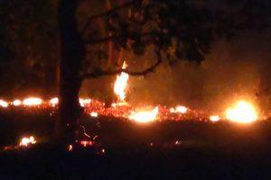 Đang cháy lớn tại Khu bảo tồn thiên nhiên Tà Cú