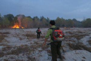 Cứu rừng Tà Cú trong đêm