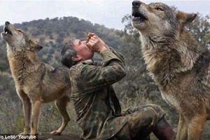 'Người rừng' sống với chó sói 12 năm khổ sở khi sống với người