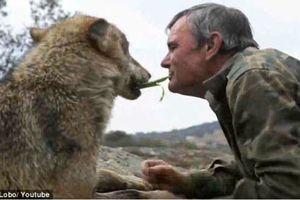 'Người sói' ngoài đời thực: 'Sống trong hang với rắn, hươu và dơi là ngày tháng hạnh phúc nhất đời'
