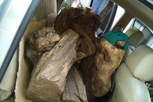 Bắt xe bán tải ngụy trang chở gỗ lậu