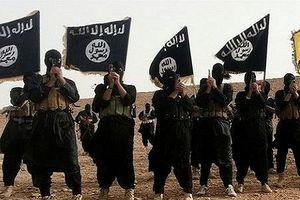 Bản tin 20H: IS tấn công Syria ngay sau vụ sân bay bị không kích