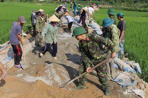 Nhiều lực lượng tham gia hỗ trợ người dân làm đường giao thông nông thôn