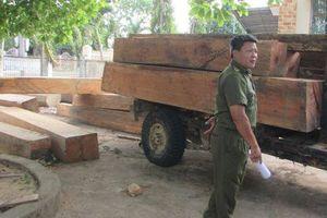 Đắk Lắk: Sẽ cách chức, xử lý nghiên cán bộ quản lý bảo vệ rừng để mất rừng