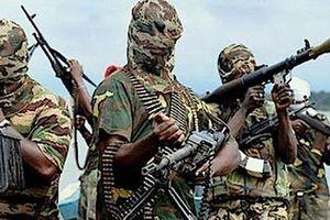 Nigeria giải cứu 149 con tin từ phiến quân Hồi giáo Boko Haram