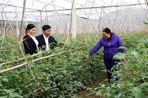 Bắc Giang: Đời sống người dân được nâng cao nhờ đẩy mạnh xây dựng nông thôn mới