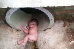 Bé gái mới sinh bị vứt bỏ giữa ổ kiến lửa sống sót thần kỳ
