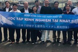 Siêu nông dân Việt ngỡ ngàng với bí mật từ 'bao tử' của Nhật Bản