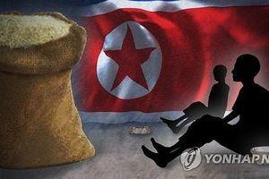 Liên Hợp Quốc cần hơn 100 triệu USD hỗ trợ nhân đạo Triều Tiên