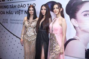 'Ông trùm hoa hậu' Philippines bị đồng hương phản ứng khi qua Việt Nam đào tạo nhan sắc