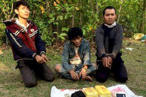 Bắt 3 người Lào vận chuyển 24.000 viên ma túy vào Việt Nam