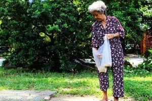 Bà già 'điên' hơn 10 năm nuôi chim trời, thú hoang ngay Thảo Cầm Viên Sài Gòn