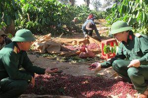 Nâng tầm thương hiệu Việt