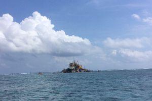 Sức sống mới trên quần đảo Trường Sa