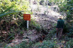Đột nhập 'tâm bão' sốt đất Phú Quốc