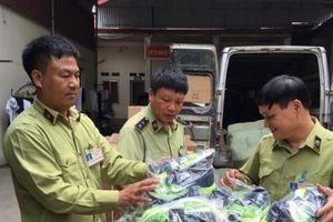 Lạng Sơn: Gần 400 đôi giày thể thao giả mạo nhãn hiệu ADIDAS và NIKE bị thu giữ
