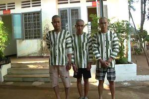 Khởi tố, bắt tạm giam 3 người tấn công CSGT khi bị kiểm tra nồng độ cồn