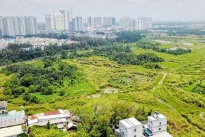 Hơn 30ha đất công bán rẻ cho Quốc Cường Gia Lai: Đại gia Nguyễn Thị Như Loan nói gì?