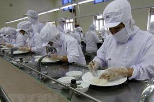 Hướng tới xuất khẩu chính ngạch sản phẩm yến sào