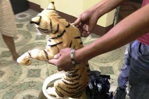 Đưa 2 con hổ ngâm trong dung dịch từ TP.HCM ra Hà Nội