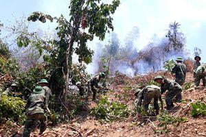 40 cán bộ, chiến sĩ Tiểu đoàn 460 tham gia chữa cháy rừng