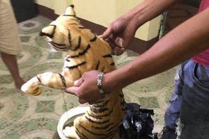 Hai con hổ nằm trong bình thủy đi xe khách ra Hà Nội